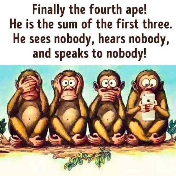 Finally the fourth ape! He is the sum of the first three. He sees nobody, hears nobody, and speaks to nobody! https://inspirational.ly