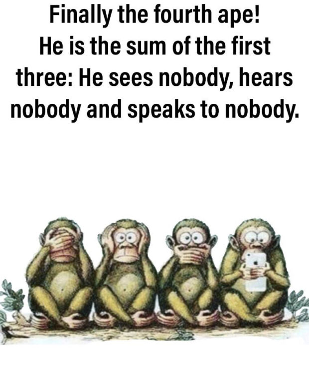 Finally the fourth ape! He is the sum of the first three: He sees nobody, hears nobody and speaks to nobody. https://inspirational.ly