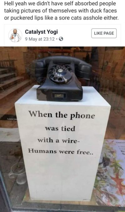 Humans were free now they are cats assholes.