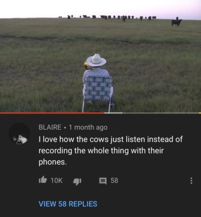 They're cows.
