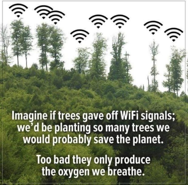 Imagine if trees gave off WiFi signals; we'd be planting so many trees we would probably save the planet. Too bad they only produce the oxygen we breathe. https://inspirational.ly