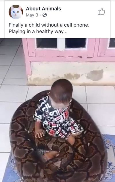 """Phones are bad. Kids should play with snakes instead."""