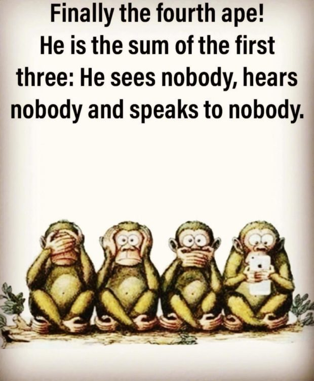 Finally the fourth ape! He is the sum of the first three: He sees nobody, hears nobody and speaks to nobody. 4 l 1 1 4 1 https://inspirational.ly