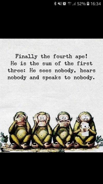 So basically I am monkey
