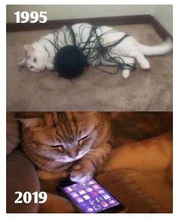 It's a catastrophe.