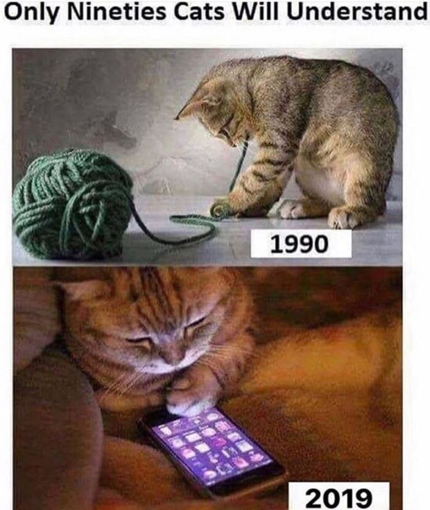 Only Nineties Cats https://inspirational.ly