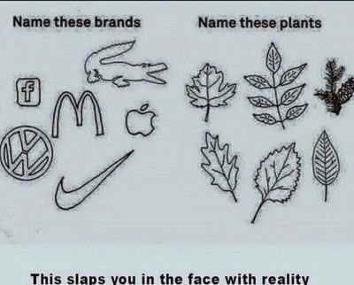 i haven't seen this yet but. BRANDS BAD NATURE GOOD