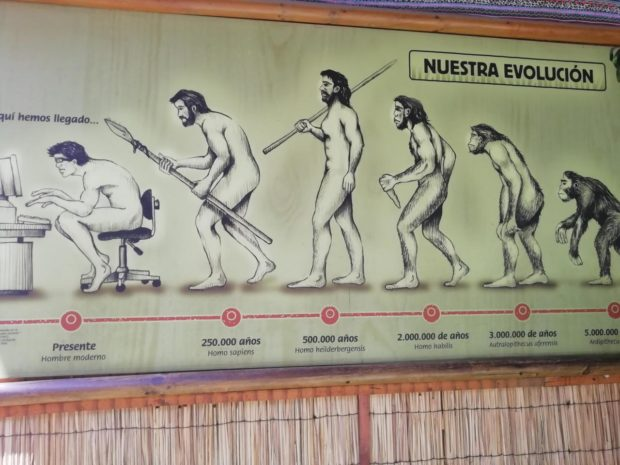 3W hemos Megado... 250.000 afios 500.000 afios 2.000.000 de afios Presente Homo sapiens Homo heilderbergensis Homo habilis https://inspirational.ly