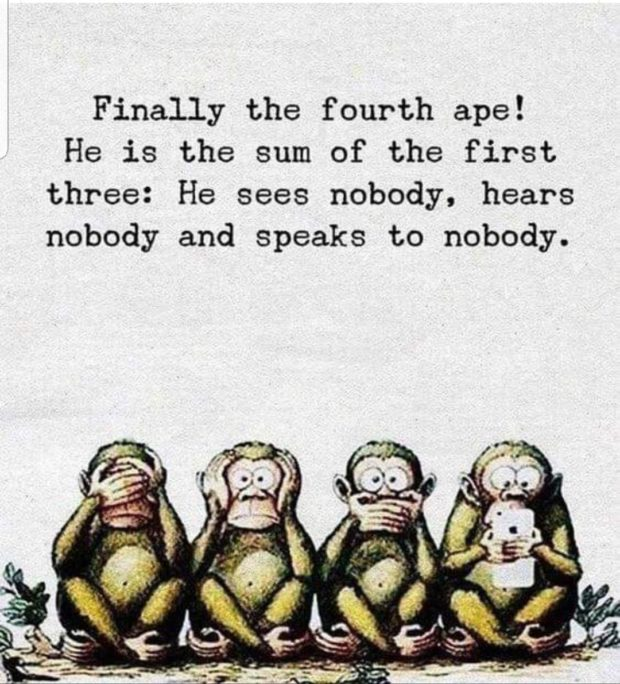 Finally the fourth ape! He is the sum of the first three: He sees nobody. hears nobody and Speaks to nobody. https://inspirational.ly