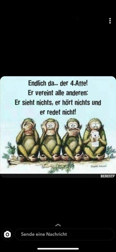 Translation: Finally he is here… the fourth monkey! He doesn't see, doesn't listen (/hear anything) and doesn't talk!